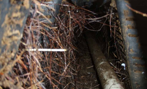 Root intrusion into infiltrators
